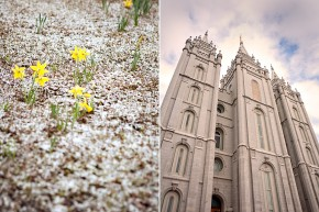 utah wedding photographer photographs a lds temple wedding