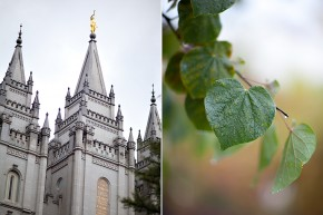 utah wedding photographer shooting a wedding at the salt lake city temple wedding